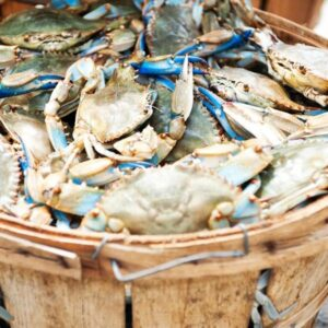 What Crab Bucket Mentality Really Is